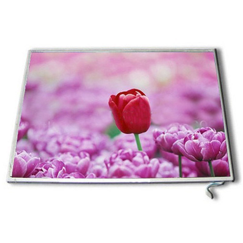 LCD Panel CHUNGHWA CLAA080WQ02 XG for PC/Mobile