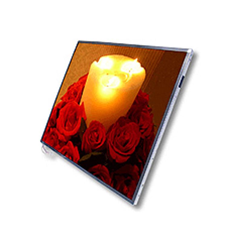 LCD Panel SAMSUNG LTN101NT06 for PC/Mobile